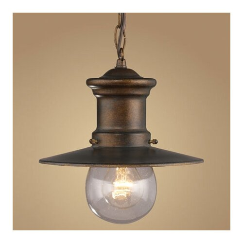 Elk Lighting Maritime 1 Light Outdoor Hanging Lantern