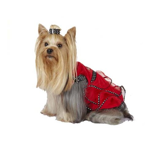 Lady Bug TuTu Dog Dress