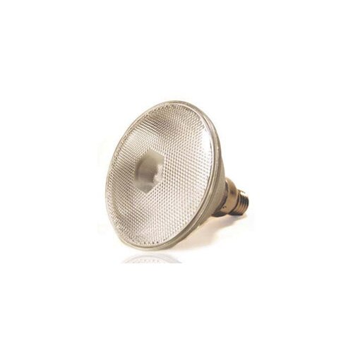 Lumensource LLC 120W Grey Halogen Equivalent Light Bulb