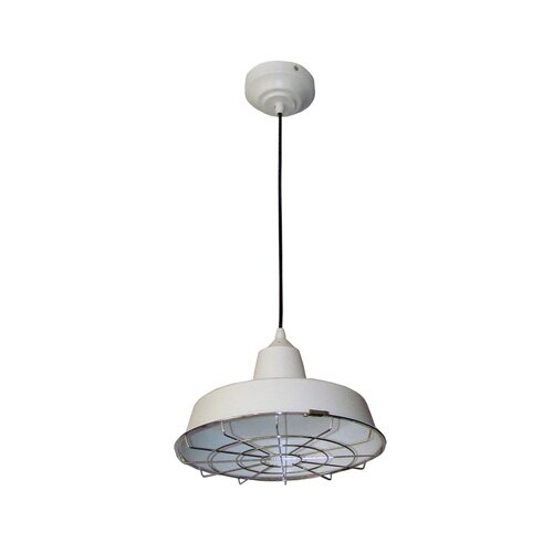 HomeSelects International 1 LED Light Pendant