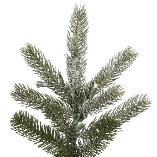Vickerman Co. Frosted Frasier Fir 7.5' Green Artificial Christmas Tree with 450 LED Lights with Stand