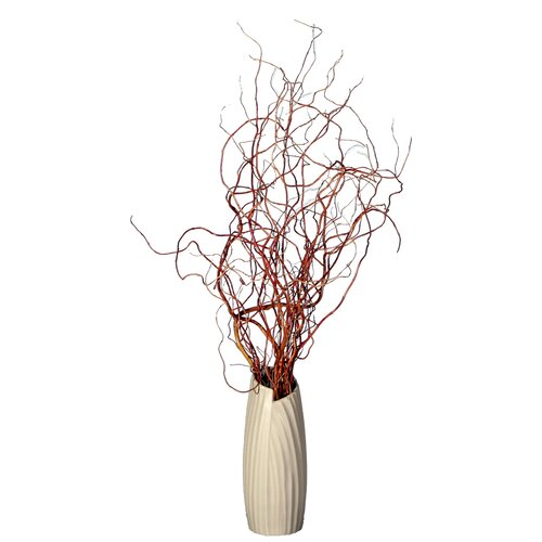 Vickerman Co. Floral Curly Willow in Vase