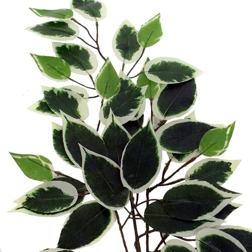 Vickerman Co. Bushes Artificial Potted Natural Variegated Ficus Tree in Basket