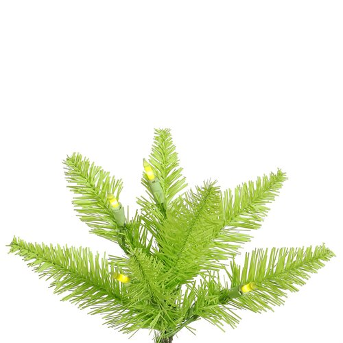 Vickerman Co. 5.5' Lime Slim Fir Artificial Christmas Tree with 300 Mini Clear Lights