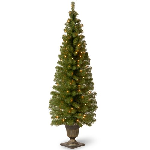 Montclair Spruce 6' Green Artificial Christmas Tree with 150 Colored & Clear Lights