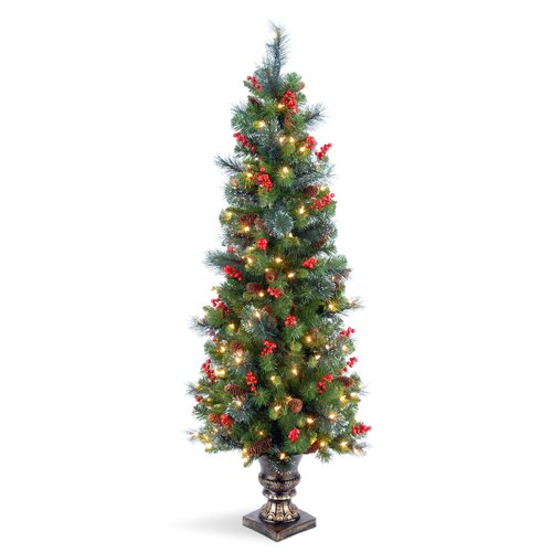 Crestwood Spruce Entrance 5' Green Artificial Christmas Tree with 150 Pre-Lit Clear Lights with ...