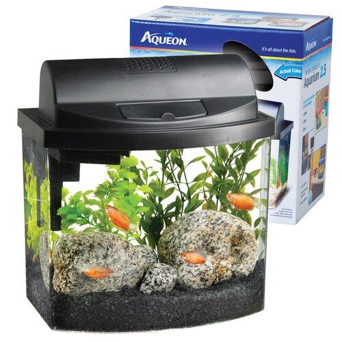 Aqueon Mini Bowl Desktop Aquarium Kit