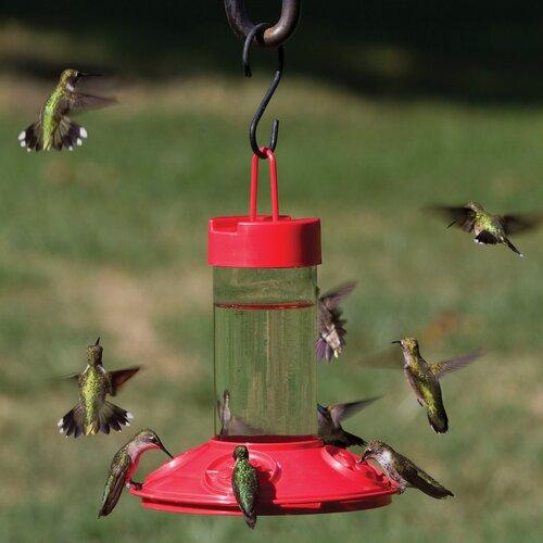 Songbird Essentials Dr JB's Hummingbird Feeder