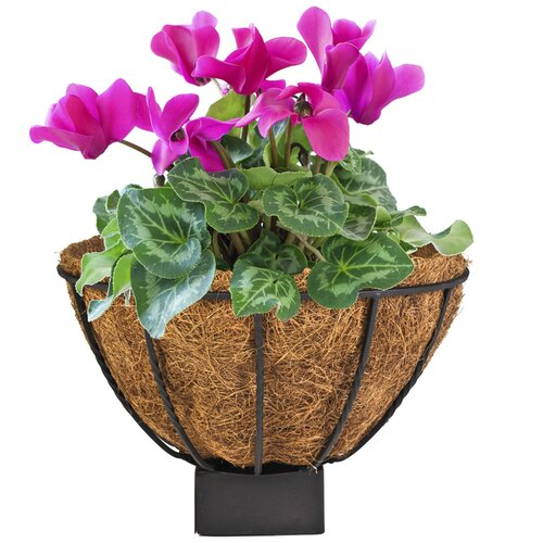 Canterbury Round Multi-Purpose Planter