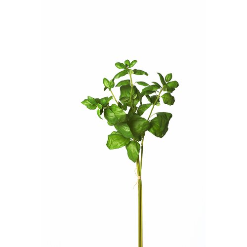 Sage & Co. Triple Basil Stem Bundle