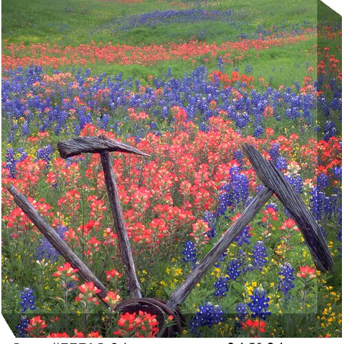 West of the Wind Outdoor Canvas Art Wheel in Field Photographic Print on Canvas