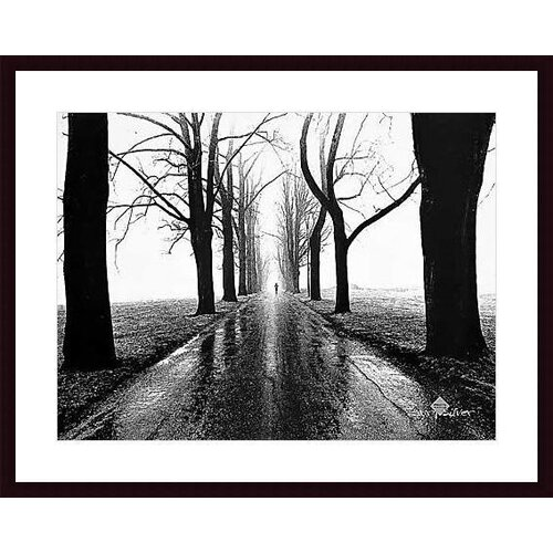 Barewalls 'Jogger, Westport, Connecticut' by Henri Silberman Framed Photographic Print