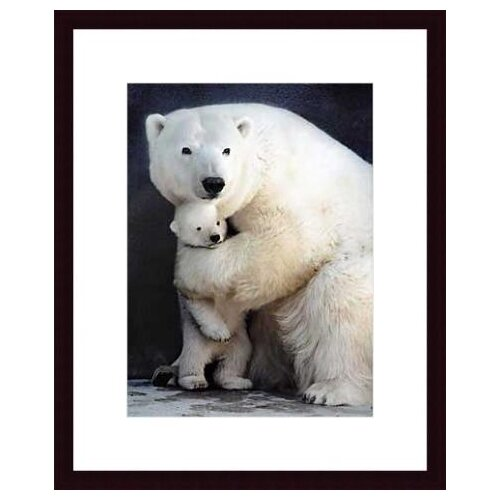 Barewalls 'Bear Hug' by Rick Egan Framed Photographic Print