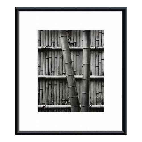 Barewalls Bamboo and Wall by Jeff Zaruba Framed Photographic Print