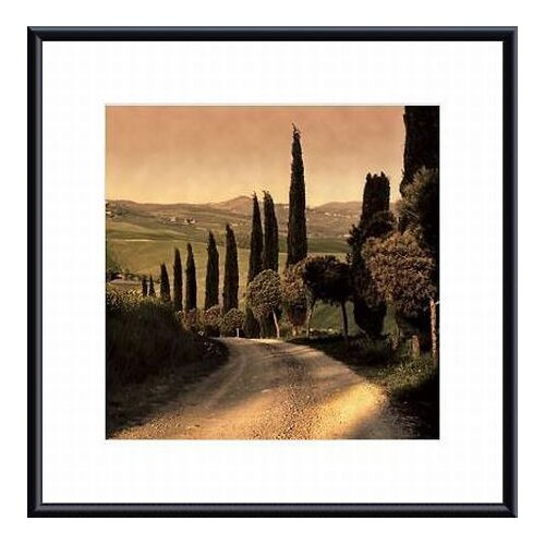 Barewalls 'Country Lane, Tuscany' by Elizabeth Carmel Framed Photographic Print