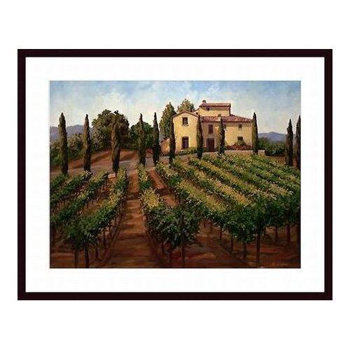 Barewalls 'Hilltop Villa' by Susan Hoehn Framed Painting Print