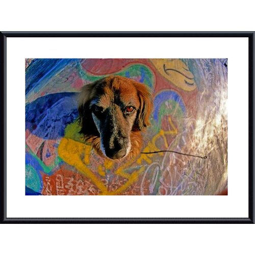 Barewalls 'Look Into My Eyes' by John K. Nakata Framed Photographic Print