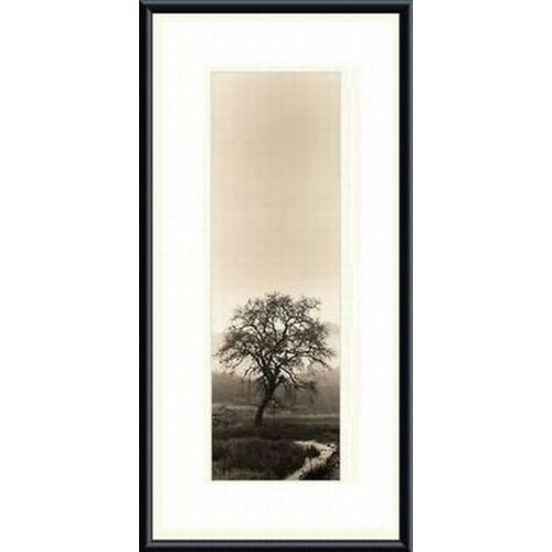 'Valley Oak Tree' by Alan Blaustein Framed Photographic Print