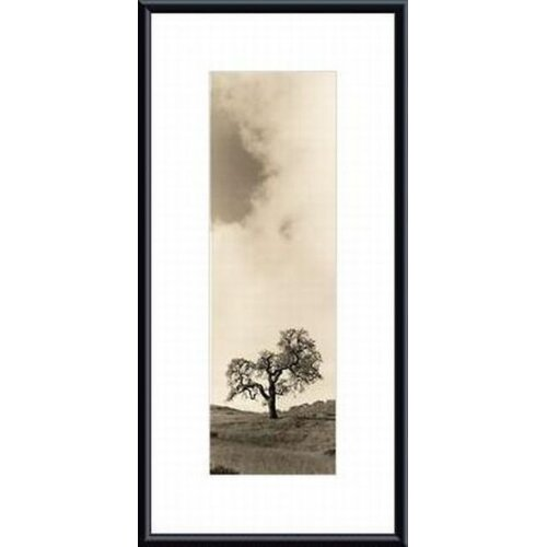 Barewalls 'Vintage Oak Tree' by Alan Blaustein Framed Photographic Print