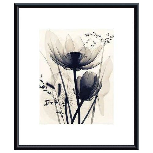 Barewalls 'Lotus and Grasses' by Judith McMillan Framed Photographic Print