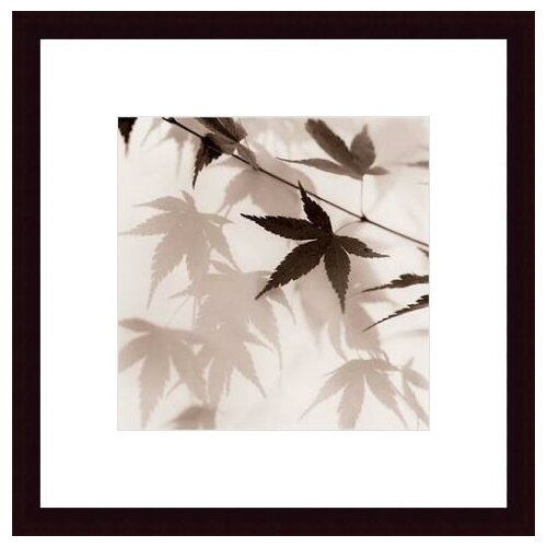 Japanese Maple Leaves No. 2 by Alan Blaustein Framed Photographic Print