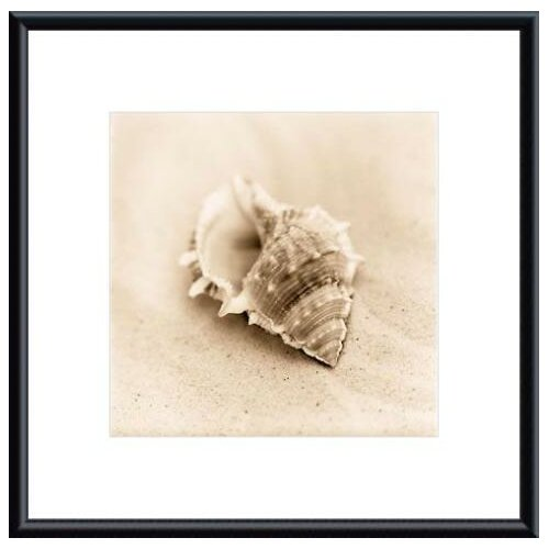 Barewalls Il Oceano No. 3 by Alan Blaustein Framed Photographic Print