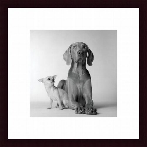 Barewalls Max and Roxie by Amanda Jones Framed Photographic Print