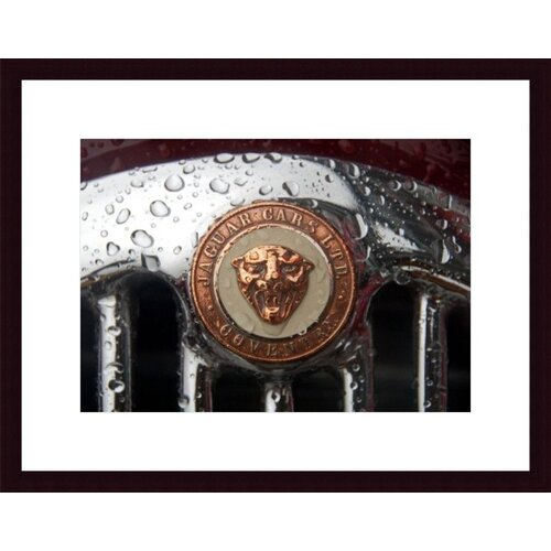 Barewalls Jaguar Badge by John K. Nakata Framed Photographic Print