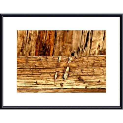 Barewalls Oreo by John K. Nakata Framed Photographic Print