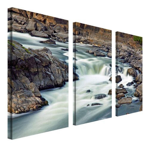 Trademark Global A Treasure by Cat Eyes 3 Piece Photographic Print on Canvas Set