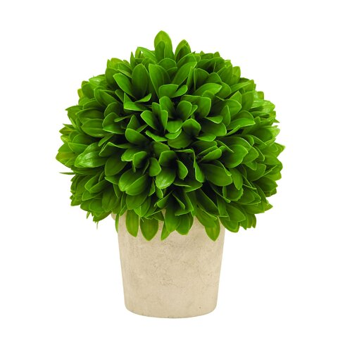 Woodland Imports Leaf Ball in Pot