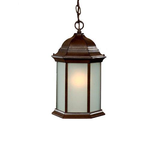 Acclaim Lighting Madison 1 Light Outdoor Hanging Lantern