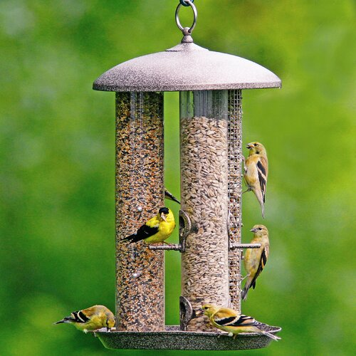 Hiatt Manufacturing Stokes Triple Tube Bird Feeder
