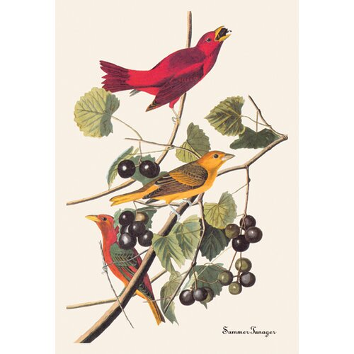 Buyenlarge Summer Tanager by John James Audubon Graphic Art on Canvas