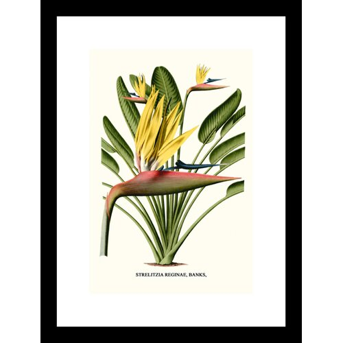 Yellow Bird of Paradise Mandela's Gold Framed Graphic Art