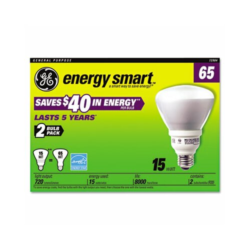 GE 15W 120-Volt Fluorescent Light Bulb