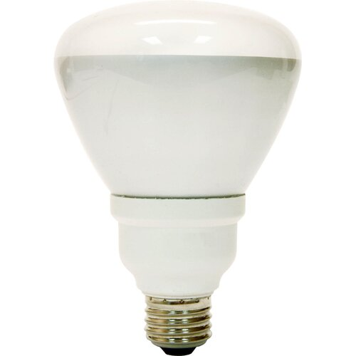 GE 15W 120-Volt (2700K) Fluorescent Light Bulb