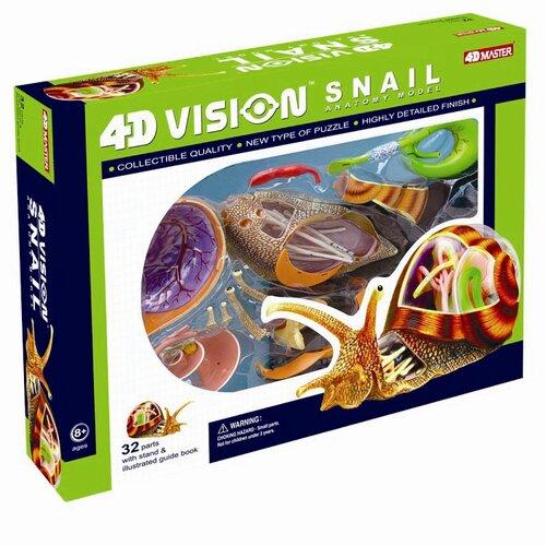 Tedco Toys 4D Vision Snail Anatomy Model