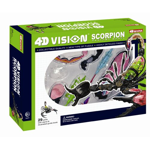 Tedco Toys 4D Vision Scorpion Anatomy Model