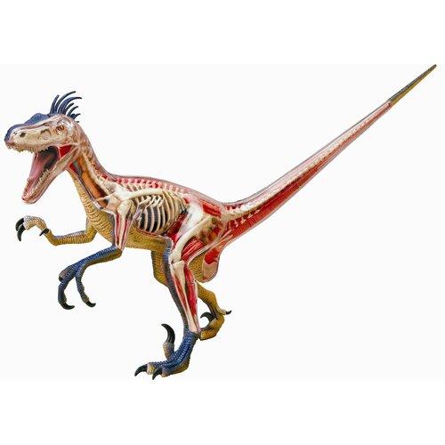 4D Vision Velociraptor