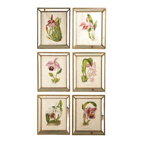 Two's Company Orchids 6 Piece Framed Painting Print Set