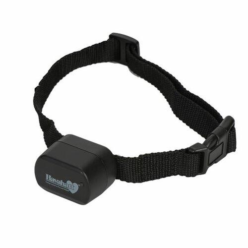 Havahart Wireless Fence Free Extra Dog Electric Collar