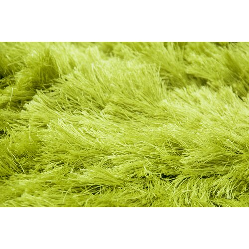 Lime Green Outdoor Area Rug: AMER Rugs Elements Neon Lime Green Area Rug & Reviews
