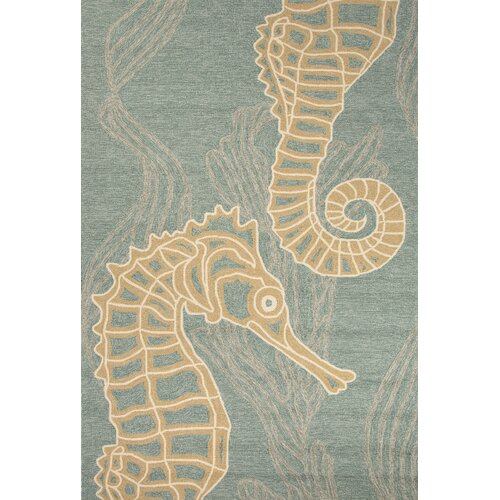 Coastal Blue Indoor Outdoor Area Rug