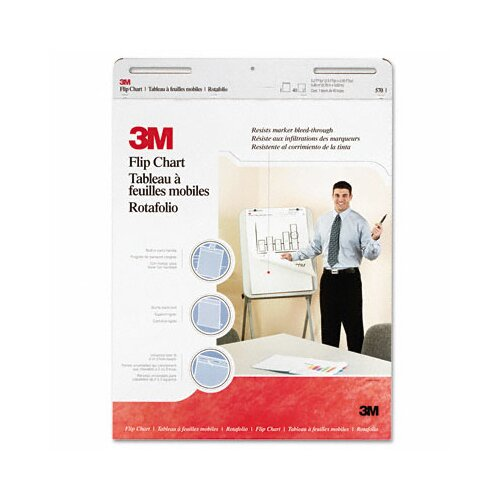 3M Professional Flip Chart Pad, 40 Sheets/Pad, 2/Carton