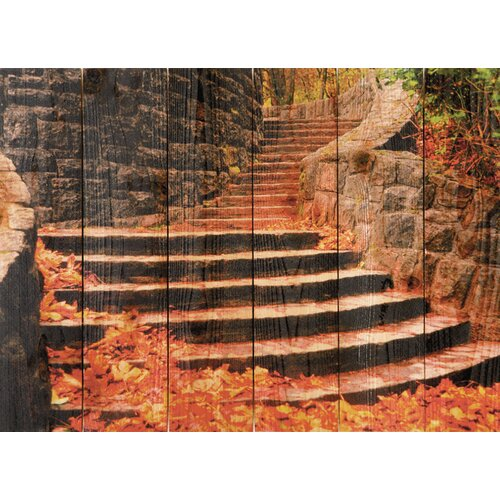 Gizaun Art Fall Steps Photographic Print