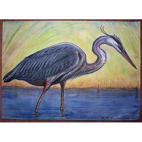 Great Blue Heron Placemat (Set of 4)