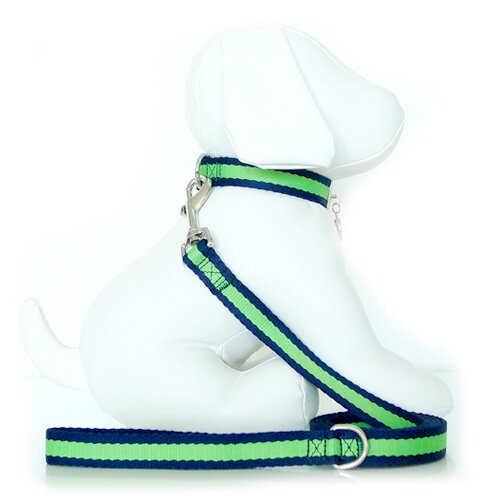 Wagberry Beyond Basics Dog Leash
