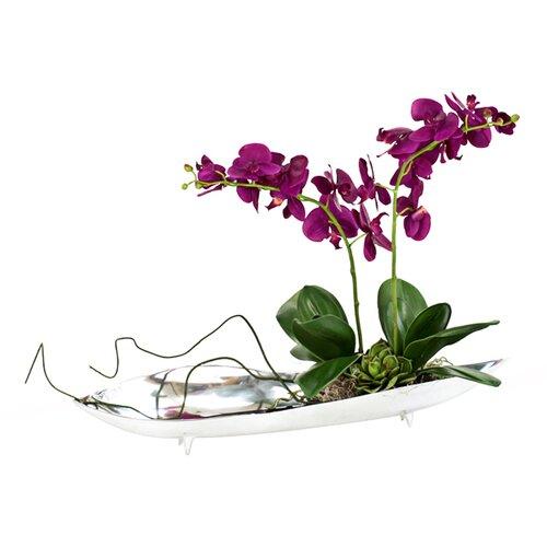Distinctive Designs Silk Orchids in Tray