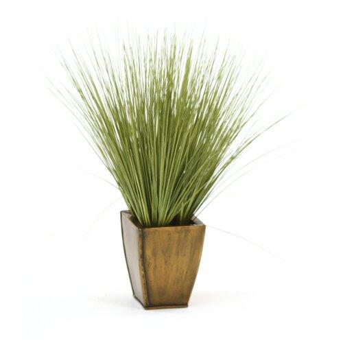Distinctive Designs Faux Basil Grass in Square Tapered Planter